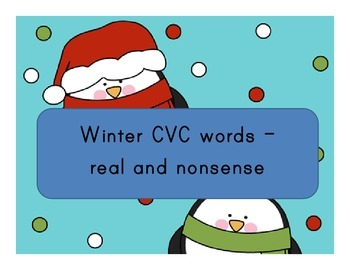 Winter CVC Read and Write the Room