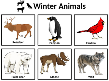 Winter Categories