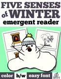 Winter Emergent Reader: Five Senses of Winter