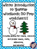 Winter Grammar Workbook/Worksheets - NO PREP!
