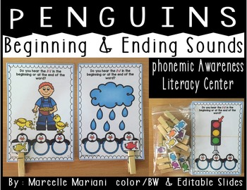 Winter Phonemic Awareness Literacy Center- Penguins (Initi