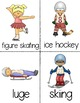 Winter Sports Early Emergent Reader PLUS Picture & Word Ca