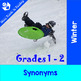Winter Vocabulary (Synonyms, Antonyms, Compound Words, Wor