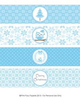 Winter Wonderland Blue Christmas Classroom Party Water Bot