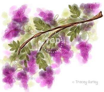 Wisteria - wisteria clip art, wisteria Printable Tracey Gu