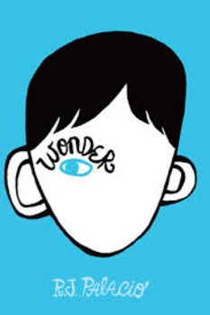 Wonder by R.J. Palacio: Create Your Own Summary Sequencing