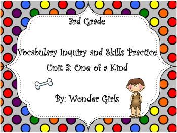 WonderGirls 3rd Grade: Unit 3 Vocabulary Inquiry and Skill