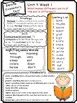 Wonders Reading Differentiated Newsletter / Study Guide Gr