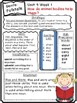 Wonders Reading Differentiated Newsletters / Study Guides