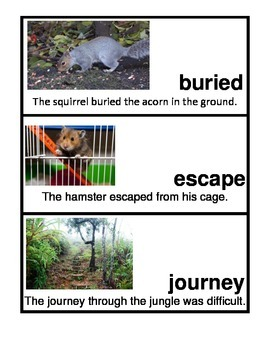 Wonders Unit 2 Week 3 Vocabulary Picture/Word Cards