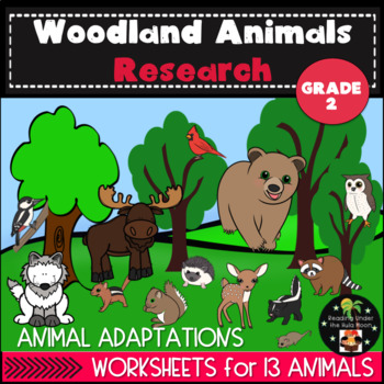 Woodland Animals Research Second Grade