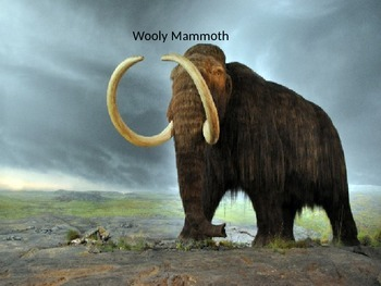 Wooly Mammoth Power Point - History Facts Information Pict