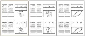 Word Family Mini Book Bundle! (11 word families!)