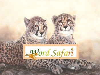 Word Safari Sight Words 2nd Gr Set B