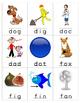 Word Wall Mini Cards CVC Set