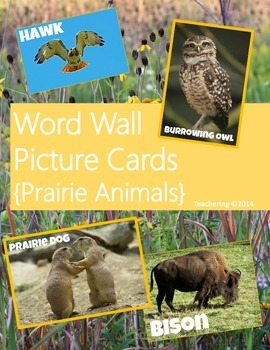 Word Wall Picture Cards {Prairie Animals}