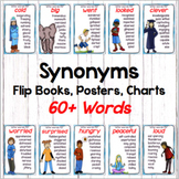 Synonym Posters WOW Words for First Grade to Fifth Grade