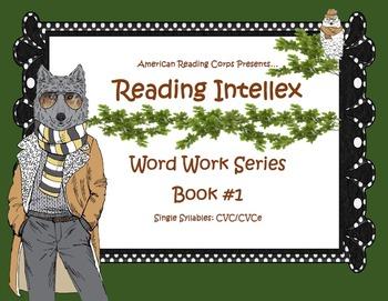 CVC Decoding Work Book: Short Vowels, Final E, Bossy R, Di