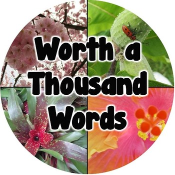 Worth a Thousand Words Store Logo