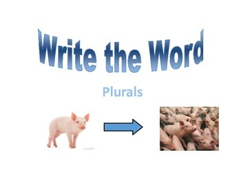 Write the Room: Plurals