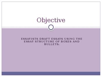 Writers Workshop: Literacy Essay Unit: Lesson 7/17