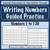 Writing Numbers to 120  Guided Practice  {Intervention, Sp