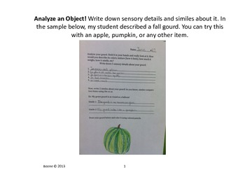 Writing Sensory Details & Similes about An Interesting Object!