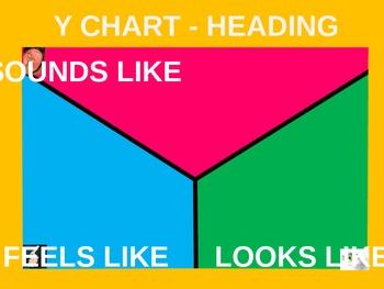 Y Chart