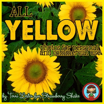 Photos Photographs YELLOW Primary Color for Personal and C
