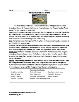 Yellow Bellied Sea Snake - Review Article Questions Facts