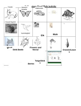 Yellowstone Food Web Lesson Plan and Activity