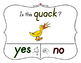 Yes No Questions with Visuals ~ Letter Q Sound / Sight Rec