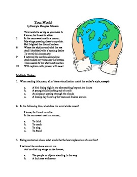 Your World - Literary Text Test Prep