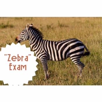 Zebra by Chaim Potok Exam