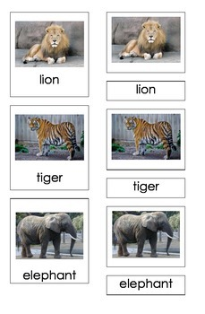 Zoo Animals (3 Piece Montessori Cards)