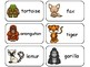 Zoo Animals Picture Word Flash Cards. Preschool flash card