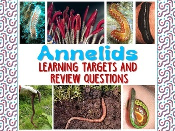 Zoology – Annelid Learning Targets and Review Questions