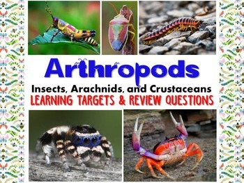 Zoology – Arthropod Learning Targets and Review Questions