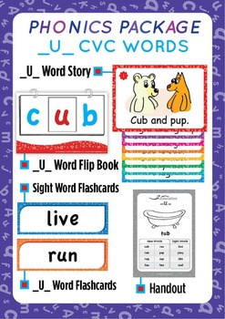 '_U_ CVC WORDS' Phonics Lesson Package