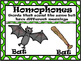 antonym, synonym, Homophone