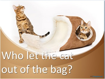 who let the cats out of the bag? & cat talks -  ESL adult