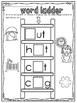 cvc word family ladder 2