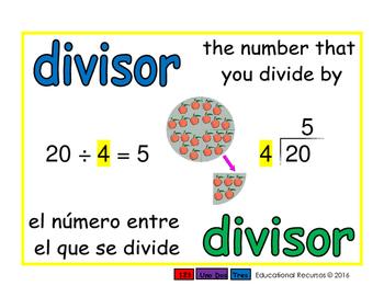 divisor/divisor prim 1-way blue/verde