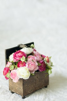 Stock Photo Styled Image: Flower Box #1 -Personal & Commer