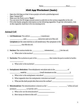 iCell App Worksheet- Basic Text
