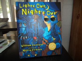 lights out  nights out    by william boniface