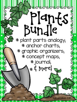 plants bundle: life cycles, graphic organizers, posters and more