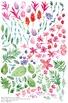 watercolor flowers clipart set #16