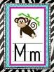 zebra themed alphabet line